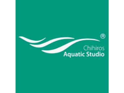 Screenshot_2021-07-25 CHIHIROS AQUATIC STUDIO – Pesquisa Google